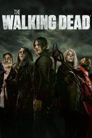 hd-The Walking Dead
